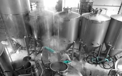 Entre bière et vélo : Entretien avec Alexandre de Zordi, fondateur de la brasserie artisanale du Mont Ventoux